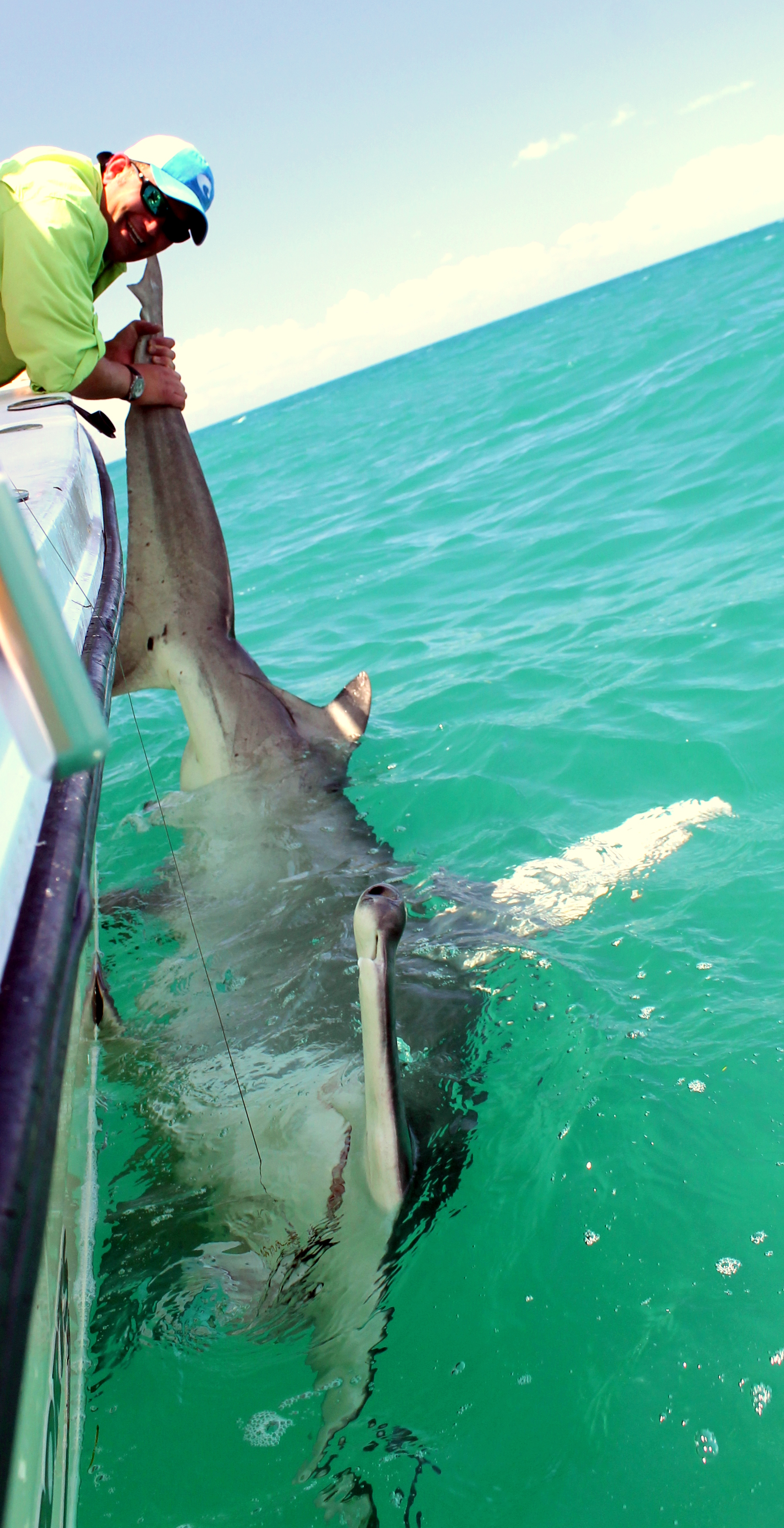 Img 5130 for Shark fishing florida